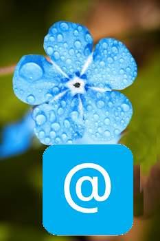 Contact Blue Rain Domains