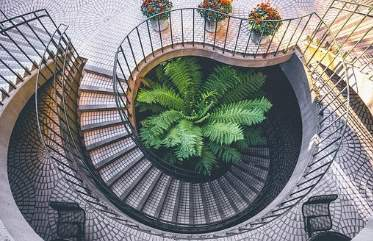 Interior Design Santa Rosa